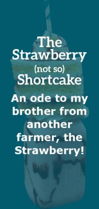 Strawberry Info