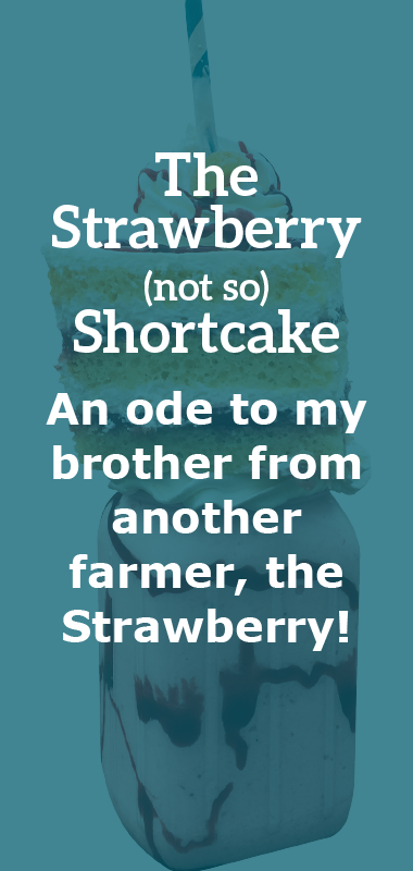 The Strawberry (not so) Shortcake Crazy Shake Description